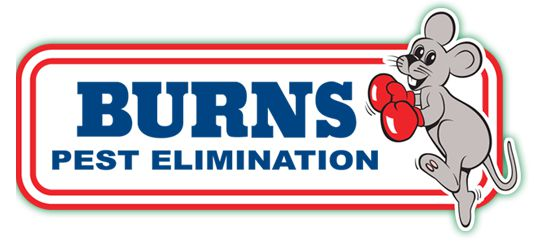 burns pest elimination Tucson